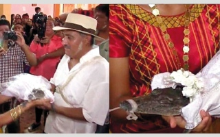 الصورة: محافظ مدينة مكسيكية يتزوج من تمساح