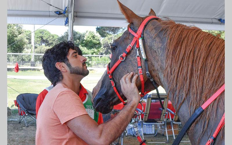 محمد بن راشد يشهد تتويج فرسان الإمارات بمهرجان القدرة في إيطاليا