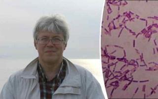 الصورة: اكتشاف بكتيريا تمنح البشر عمراً أطول وشباباً دائماً