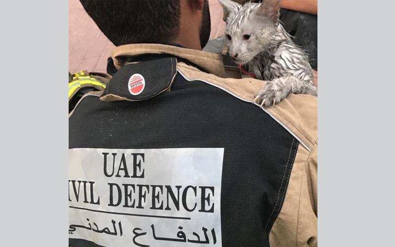 """الصورة: بالفيديو.. أبرز التحديات التي واجهتها فرق الدفاع المدني وشرطة دبي للسيطرة على حريق """"الشعلة"""""""