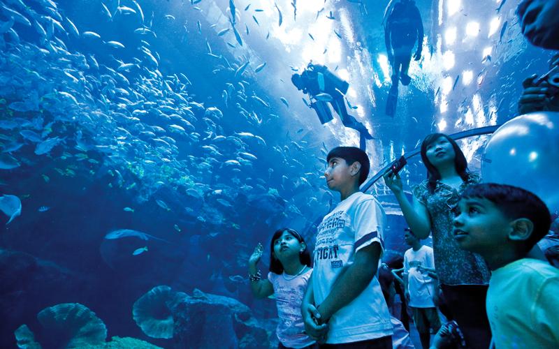 «دبي أكواريوم» يحتضن أكثر من 33 ألف كائن حي مائي. أرشيفية