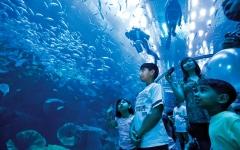 الصورة: أبرز 9 وجهات للترفيه الداخلي في دبي