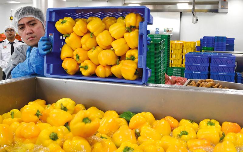 «غرفة دبي» تدعو التجار إلى تنويع واردات الفلفل الطازج والتركيز على الجودة العالية - الإمارات اليوم