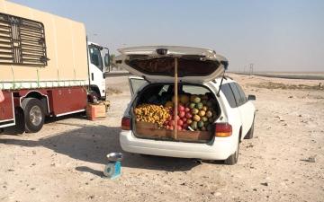 الصورة: 30 مخالفة سيارات مهملة و55 لوحة عشوائية في مدينة الفلاح