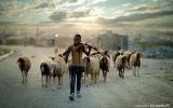 الصورة: زووم.. على العالم