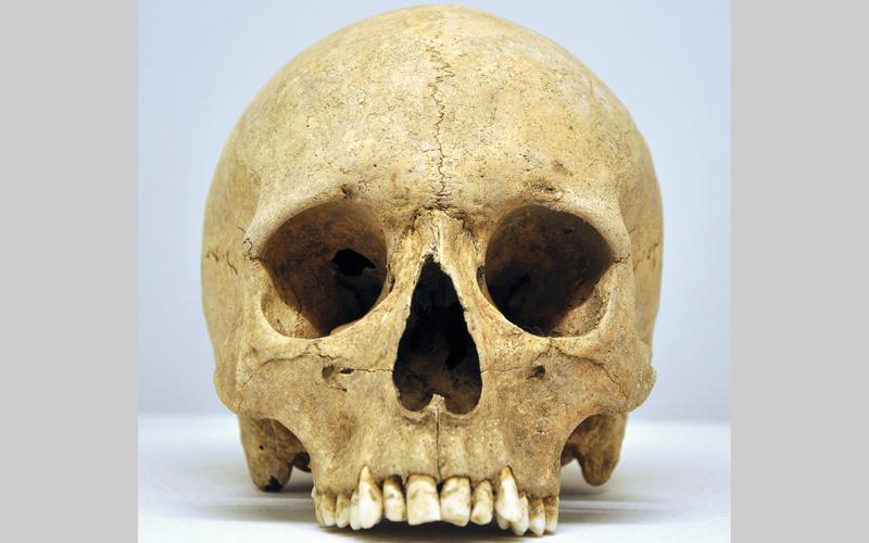 لصوص القبور يلقون 4 أكياس جماجم   و95 جثة في طريق عام