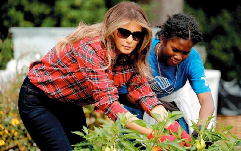 الصورة: ميلانيا ترامب تزرع الفلفل والبامية في البيت الأبيض