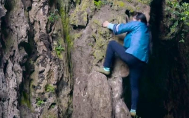 الصورة: بالفيديو.. تعرف  إلى المرأة العنكبوت