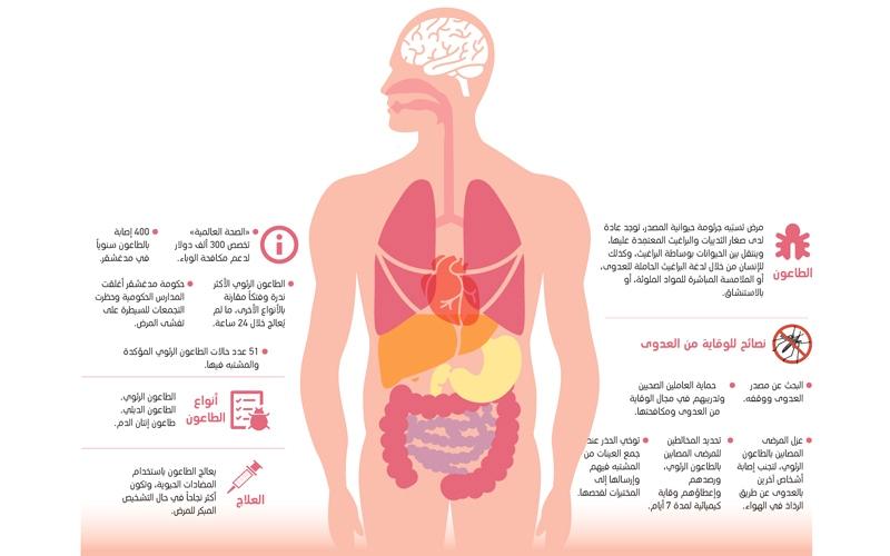 الصورة: «الصحة»: إجراءات احترازية لمنع دخول الطاعون الرئوي إلى الدولة