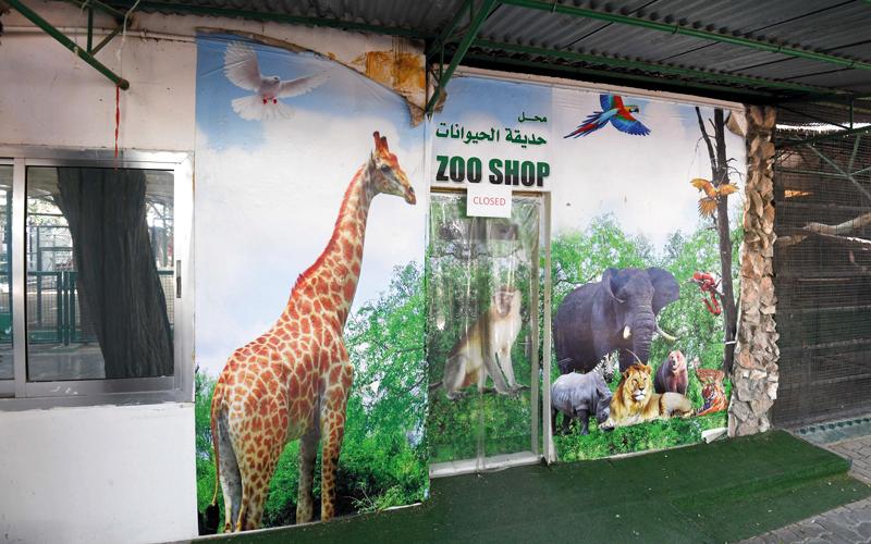 حديقة حيوان دبي إلى التقاعد  بعد 50 عاماً من الخدمة