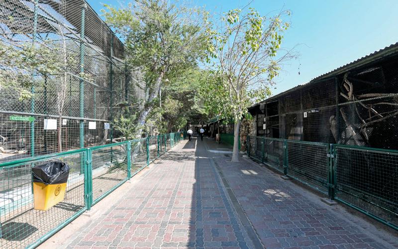 حديقة حيوان دبي أغلقت أبوابها يوم الأحد الماضي للمرة الأخيرة. الإمارات اليوم