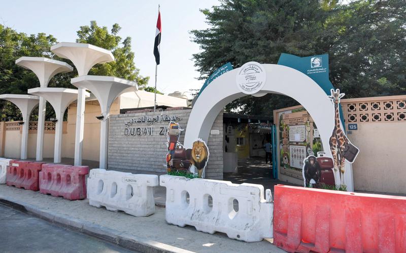 حيوانات الحديقة انتقلت بالكامل إلى «سفاري دبي» التي تفتح أبوابها للجمهور قريباً. الإمارات اليوم
