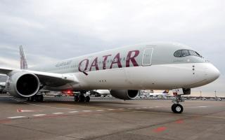 الصورة: طيران قطر «تتسول» الركاب والحيوانات