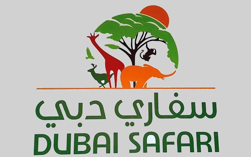 الصورة: «سفاري دبي».. لمسات أخيرة للافتتاح القريب