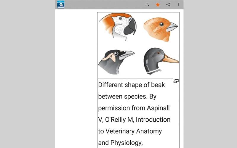 الصورة: Veterinary Dictionary.. للمعلومات التشريحية للحيوانات وأمراضها وطرق التداوي