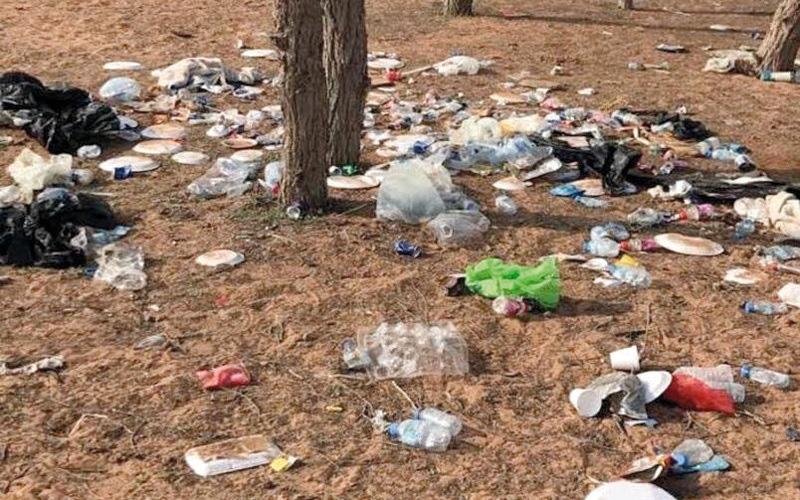 الصورة: «مزرع» تعاني النفايات والقوارض