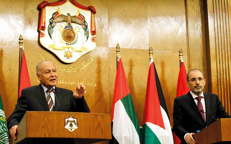 أبوالغيط والصفدى يعلنان التمسك بمرجعيات عملية السلام في الشرق الأوسط.  إي.بي.أيه
