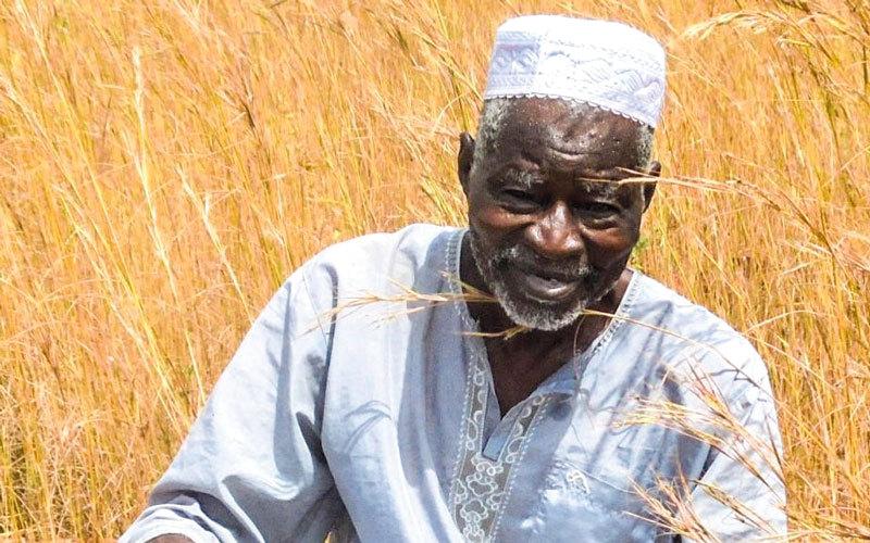 ياكوبا ساوادوقو (80 عاماً) «قاهر الصحراء» ابتكر تقنية مبدعة تسمى «الزاي» لتحويل أراضي بلاده إلى جنة خضراء. الإمارات اليوم