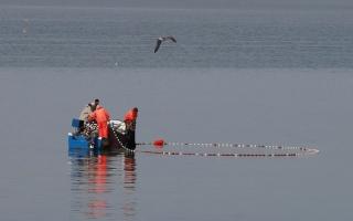 الصورة: شباك صيد