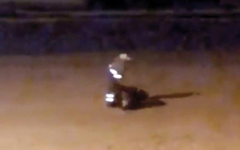 الصورة: بالفيديو.. التحقيق في إلقاء مخلفات على شاطئ «شعم» قبل بدء حملة تنظيف