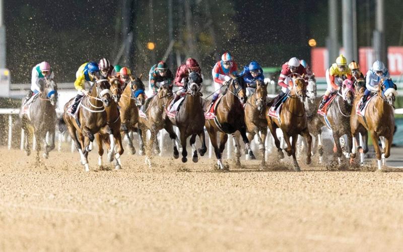 الصورة: 110 خيول تتنافس على ألقاب النسخة الـ 23 من كأس دبي العالمي