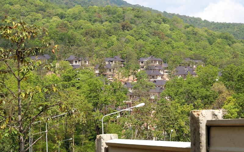 الصورة: ناشطون في تايلاند يمنعون بناء مشروع عقاري فاخر في غابة
