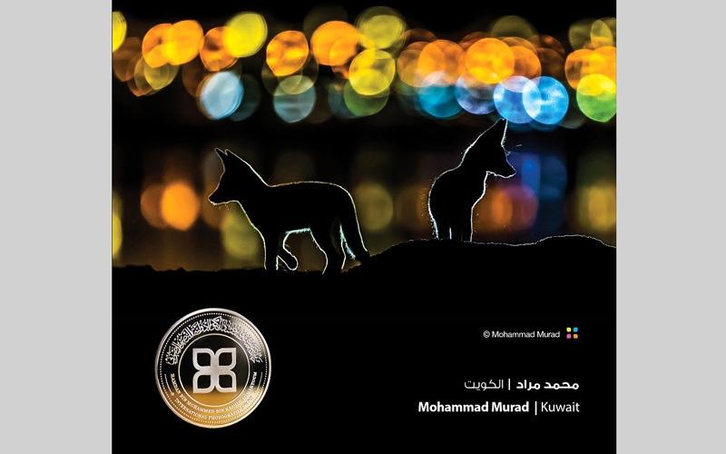 الصورة: «حمدان بن محمد للتصوير».. خيال وظلال وغموض