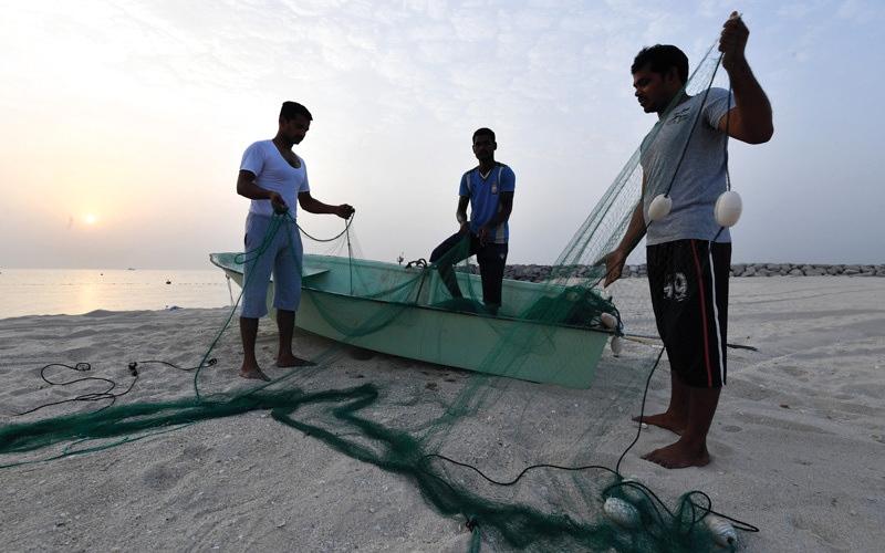 الصورة: خدمات ومزايا جديدة لصيادي الأسماك في دبي