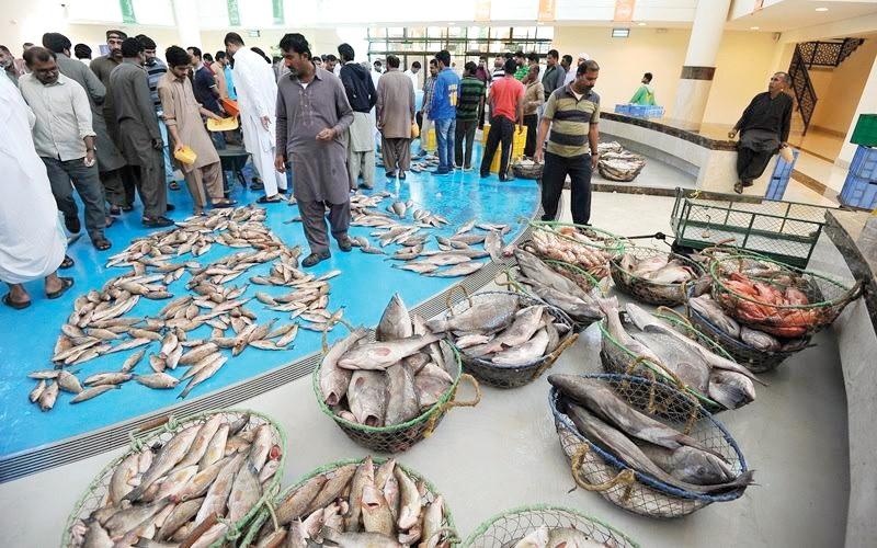 الصورة: سوق الأسماك بالشارقة: وفرة في المعروض.. وارتفاع في الأسعار