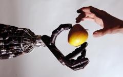 الصورة: تقنية الروبوتات تستحدث وظائف غير روتينية لموظفي الحكومة و«الخاص»
