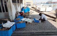 الصورة: مستهلكون: عمالة آسيوية تنظف الأسماك في أماكن «غير صحية»