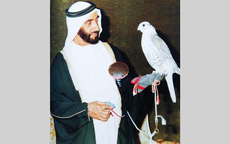 الشيخ زايد ارتبط بالصقور ورياضة الصيد بالصقور ارتباطاً وثيقاً. أرشيفية