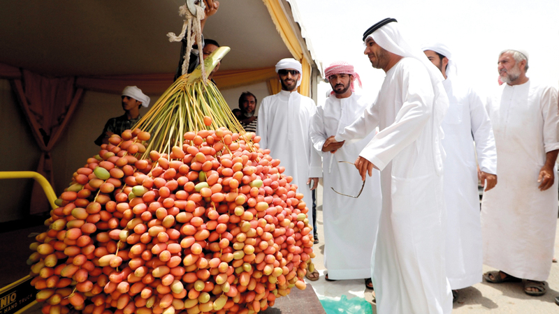 منافسات مسابقة أكبر عذج أسفرت عن تقدم المزارع محمد سلطان بتال مبارك المرر بالمركز الأول، بوزن 97 كيلوغراماً و100 غرام.  من المصدر
