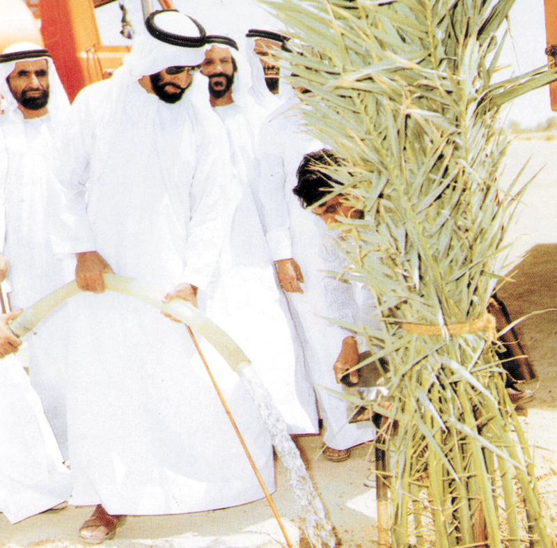 الشيخ زايد كان يهتم كثيراً بالزراعة وخصوصاً النخيل.  أرشيفية