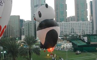 الصورة: تعاون فني بين منطادي «الإمارات» و«الباندا الصيني»