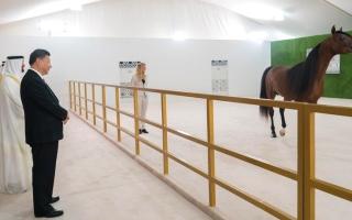 الصورة: محمد بن زايد يهدي الرئيس الصيني الحصان العربي الأصيل «جلاردو جاي»