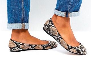 الصورة: نقوش الحيوانات تزيّن حذاء الباليرينا