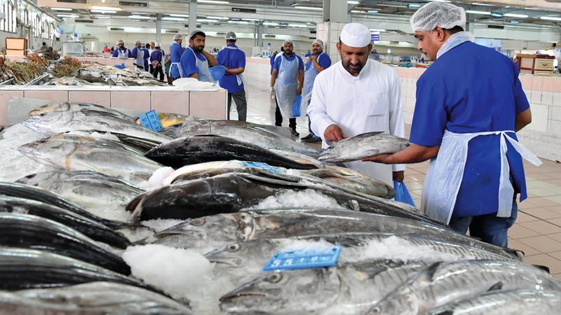 837b43cad حركة البيع متوسطة لقلة المعروض من الأسماك وارتفاع الأسعار وعزوف البعض عن  الشراء. تصوير: نجيب محمد