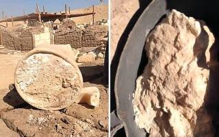 الصورة: أقدم قطعة جبنة في العالم.. مصرية