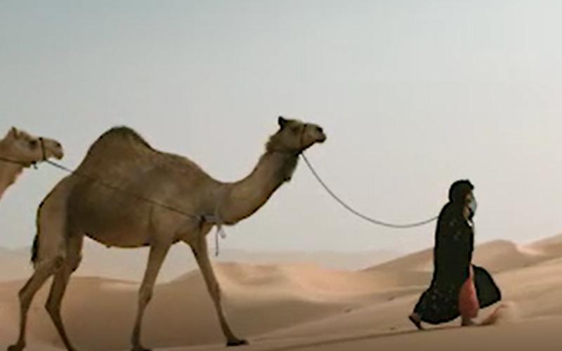 الصورة: بالفيديو..فاطمة الهاملي: الصحراء مصدر سعادتي وسبب قوتي
