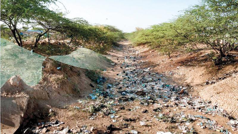 التخلص العشوائي من النفايات يشكل أحد أهم التحديات في أبوظبي. من المصدر