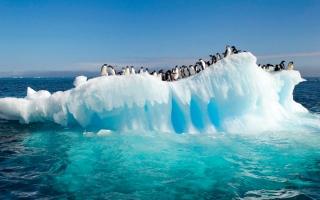 الصورة: كيب تاون تفكّر في جرّ جبل جليدي.. للشرب