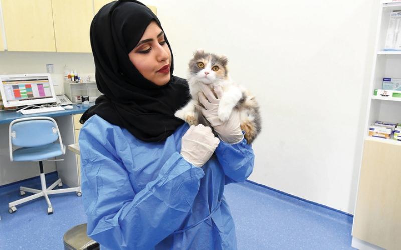 الصورة: بالفيديو.. ناعمة المهيري: إنقاذ الحيوان واجب ومسؤولية إنسانية