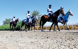 حمد الكعبي بطلاً لسباق مدينة دبي الدولية للقدرة التأهيلي