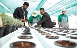 الصورة: «الشارقة الإنسانية» تفتتح أول مزرعة ذكية لذوي الهمم في خورفكان