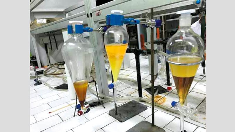 صور للعيّنات في المختبر. من المصدر