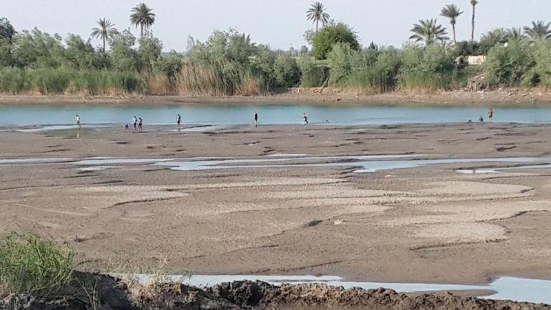 شح مياه الأنهار يُجبر الحكومة العراقية على استيراد القمح.  أرشيفية