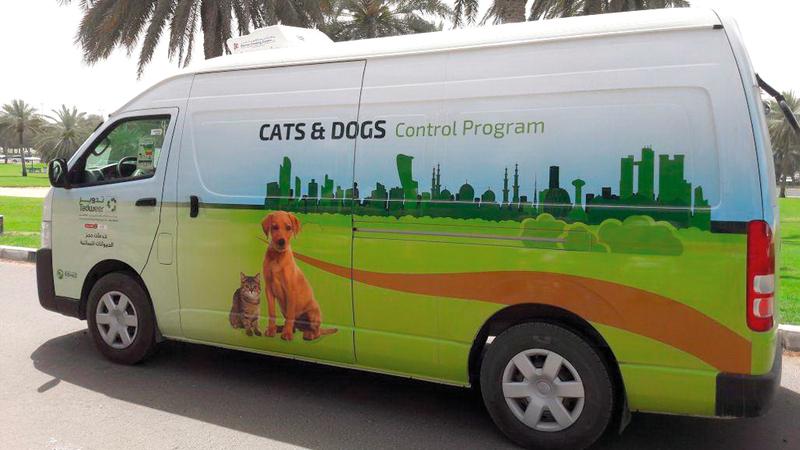 الحيوانات السائبة تحجز وتنقل بسيارات مجهزة إلى مأوى الحيوانات.  من المصدر