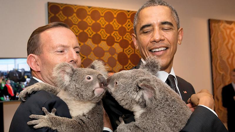 رئيس الوزراء الأسترالي وأوباما يداعبان دبي الكوالا.  غيتي