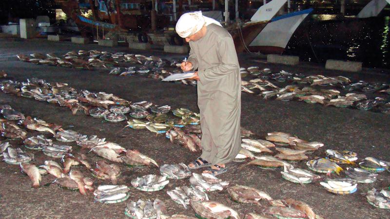«بيئة أبوظبي» أكدت وجود بدائل للصيد بطريقة الحلاق منها الصنارة واللفاح والشب. من المصدر